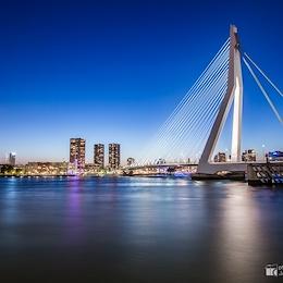 Erasmus Bridge / Erasmusbrug